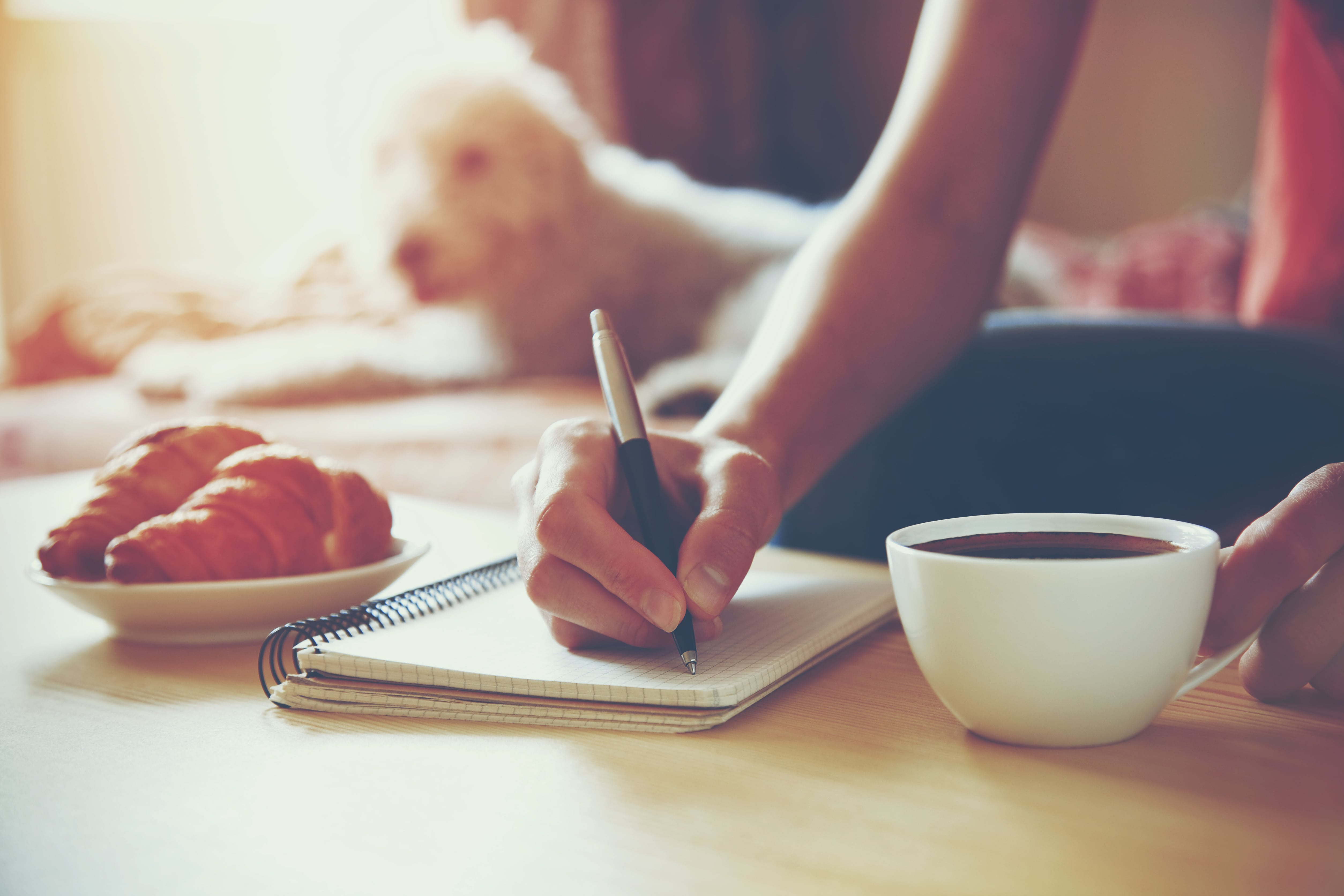 A young woman works on starting her business plan with a cup of coffee in the morning as her dog monitors the situation.