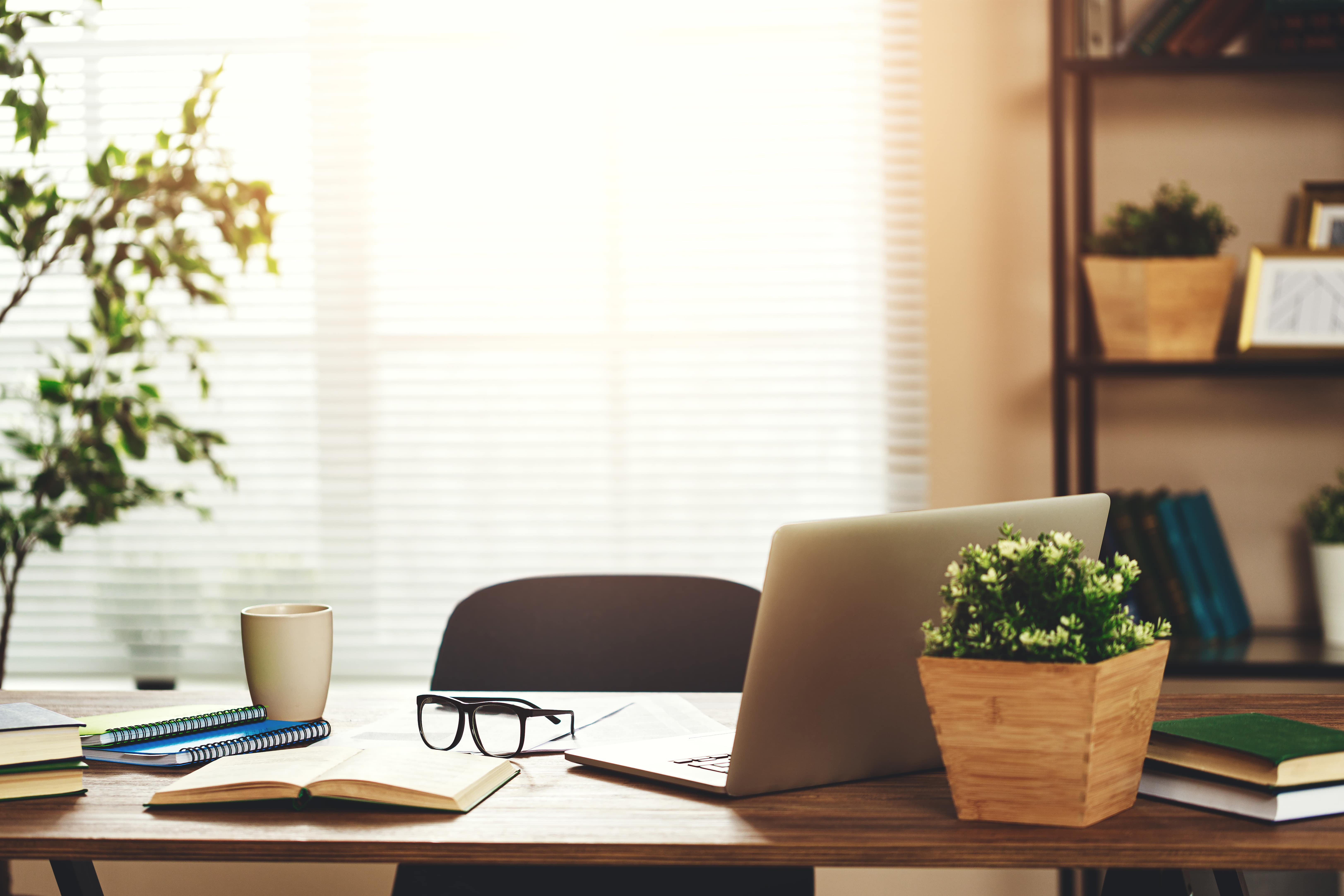 Warm sunlight shines through the blinds onto a wooden desk that holds a silver laptop, several books, a couple plants, reading glasses, and a coffee mug.