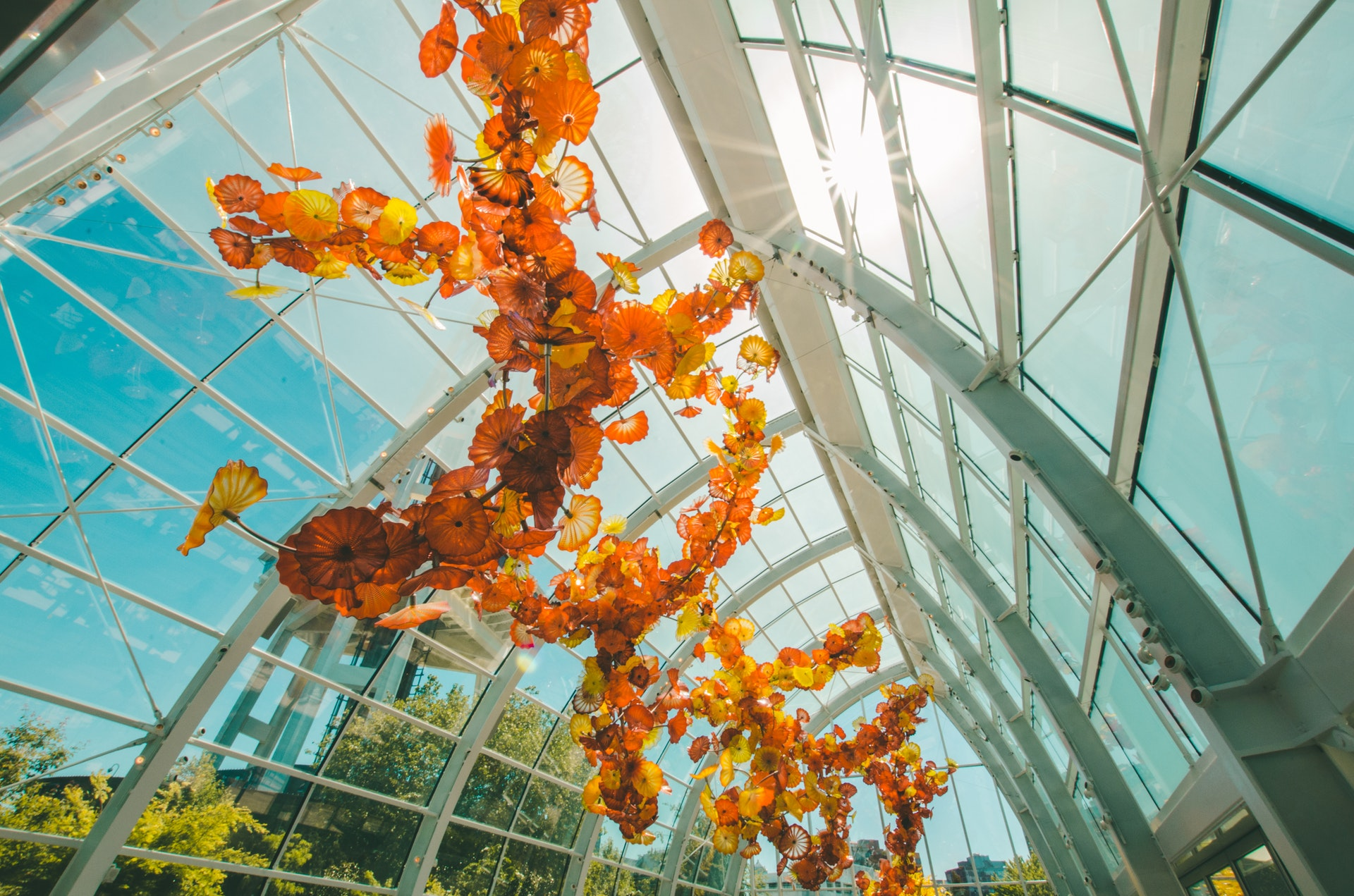 A large domed glass building where beautiful orange flowers hang under the glass, dazzling in the sunlight on a clear day